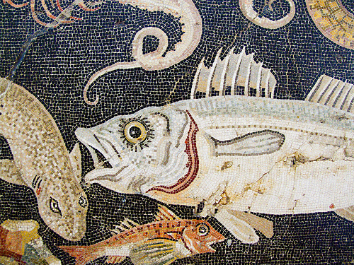 Marine mosaic detail, from a house in Pompeii (2nd century BC), by chrisjohnbeckett, on Flickr