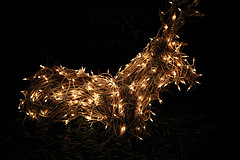 Light-up Reindeer