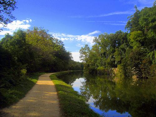 Winding Path by NCinDC