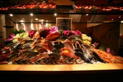 fish display2