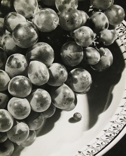 Rossler, Grapes