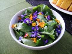 Yard Salad