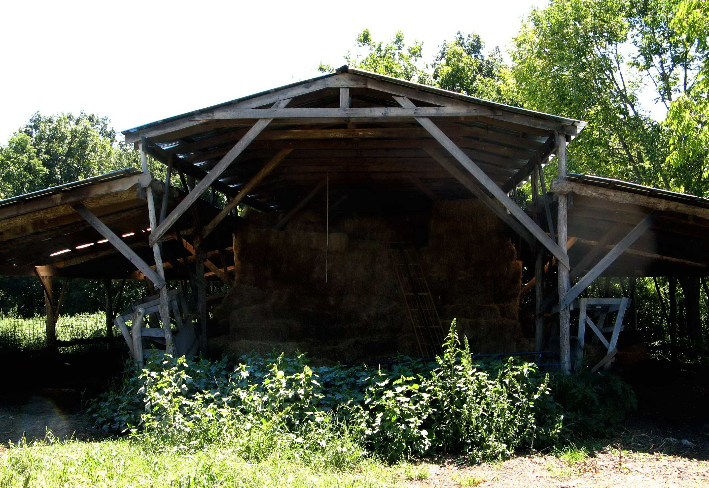 Barn made famous in The Omnivore's Dilemma