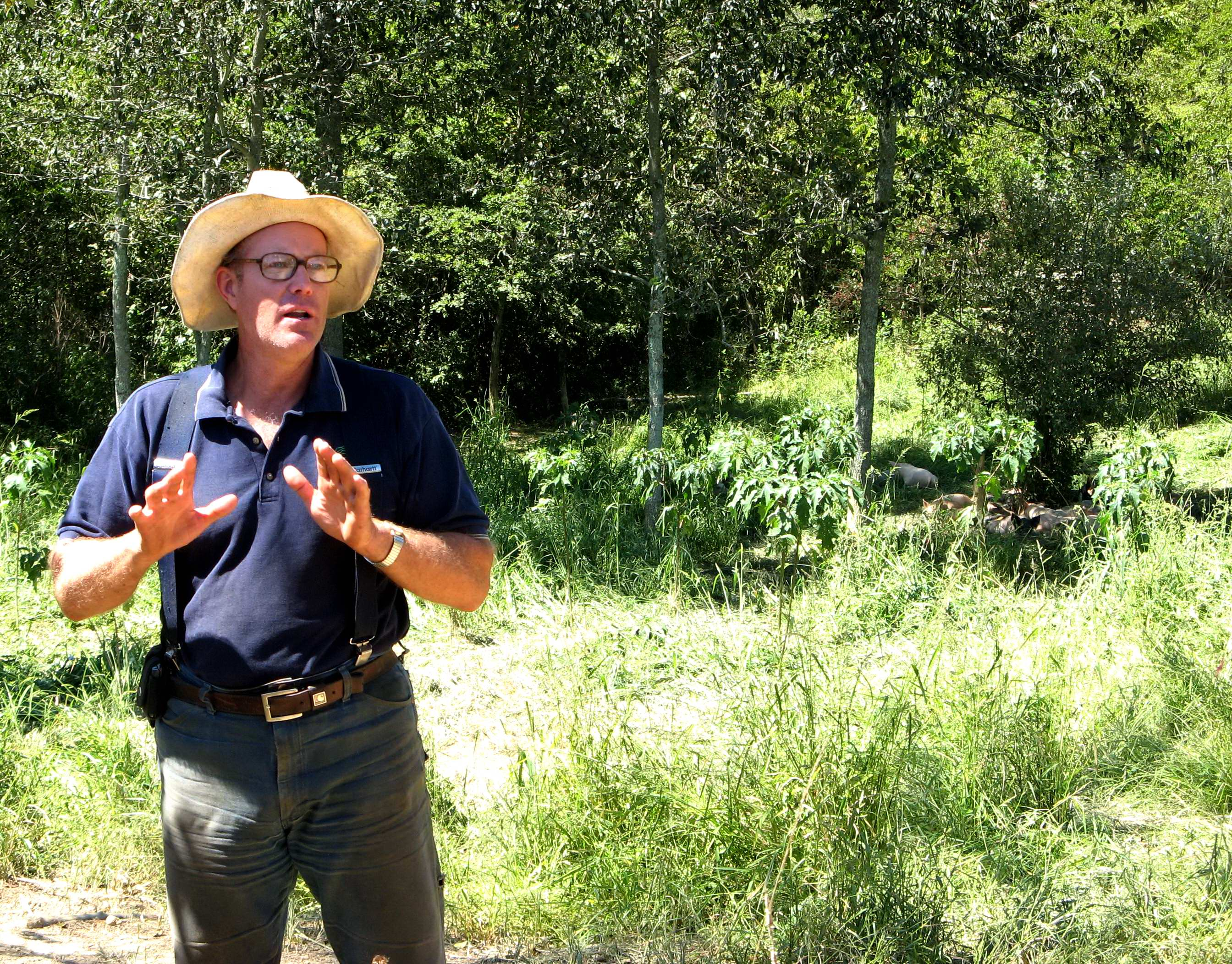 Joel Salatin of Polyface Farm, and his pigs
