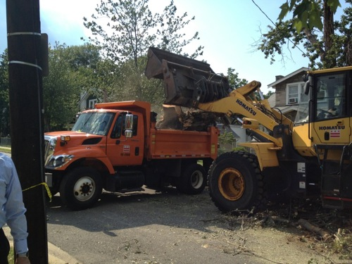DDOT crews clear a tree in Woodridge