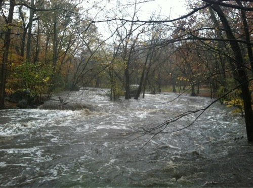 Rock Creek Overflow by Mark Segraves, WTOP